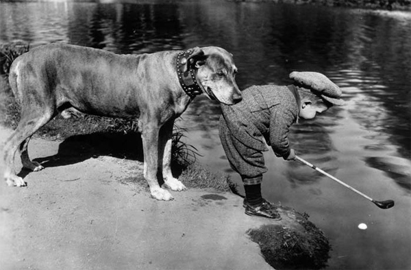 Helpful-Dog,-1920s